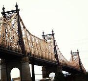 Φώτης Σεργουλόπουλος: Από την Πάρο στη Νέα Υόρκη (φωτογραφίες)