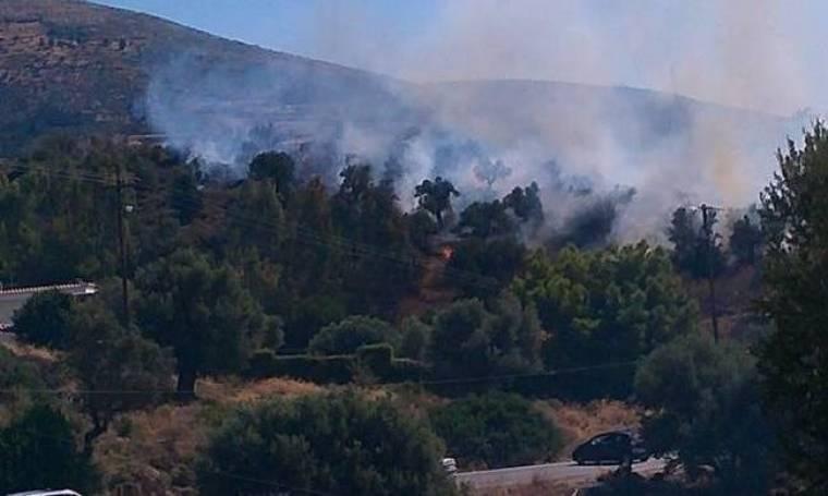 Μεγάλη φωτιά έξω από την Αμάρυνθο- Έκλεισε ο δρόμος