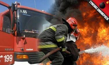 ΣΥΝΑΓΕΡΜΟΣ: Μεγάλη φωτιά απειλεί σπίτια στον Μαραθώνα