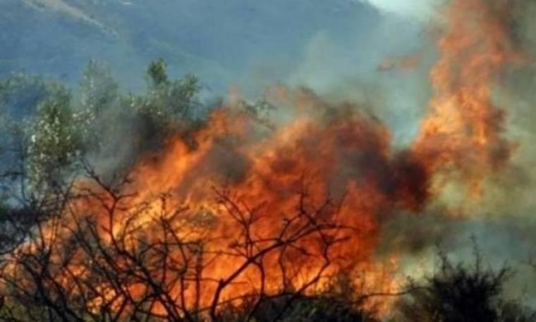 Πολύ υψηλός κίνδυνος πυρκαγιάς και την Κυριακή
