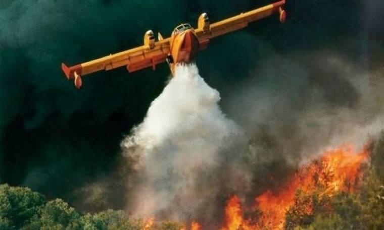 Σε εξέλιξη δύο πυρκαγιές σε Παρνασσό και Ζάκυνθο