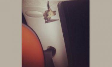 Απίστευτο κι όμως αληθινό: Mοντέλο  βρήκε νυχτερίδα στο παρκαρισμένο αυτοκίνητο του στην Γλυφάδα!