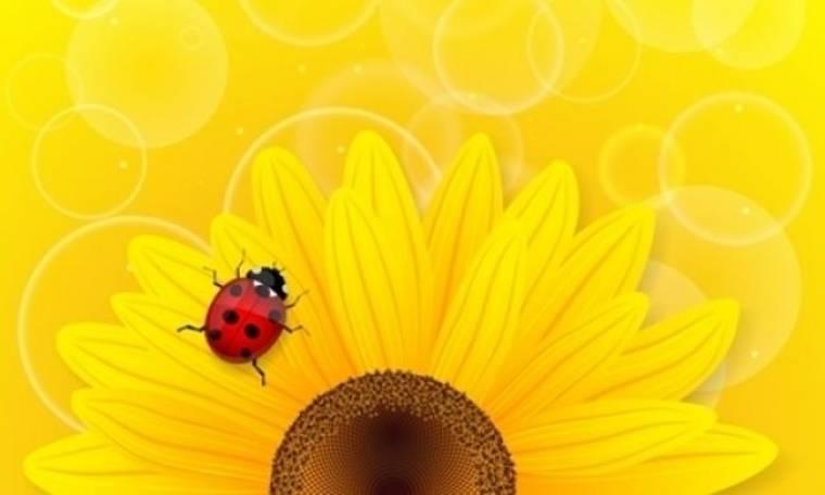 Οι τυχερές και όμορφες στιγμές της ημέρας: Δευτέρα 30 Σεπτεμβρίου