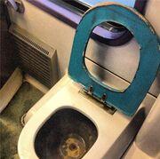 Αντώνης Λουδάρος: Έξαλλος με το WC του τρένου, ζητάει να κλείσει ο ΟΣΕ!