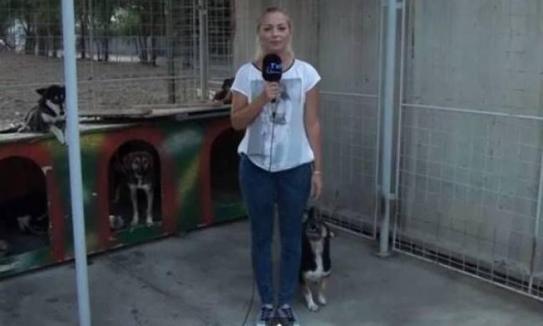 Σκύλος κάνει την ανάγκη του στο πόδι της ρεπόρτερ (vid)
