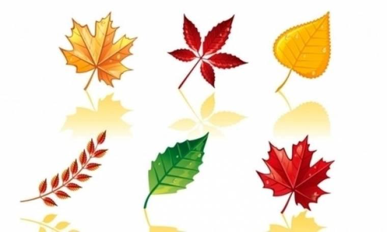 Οι τυχερές και όμορφες στιγμές της ημέρας: Τετάρτη 30 Οκτωβρίου