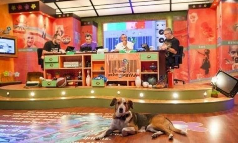 «Ράδιο Αρβύλα»: Σάρωσαν σε νούμερα τηλεθέασης