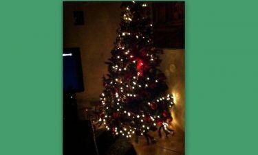 Ποιος τραγουδιστής στόλισε το χριστουγεννιάτικο δέντρο του;