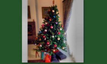 Το χριστουγεννιάτικο δέντρο της…
