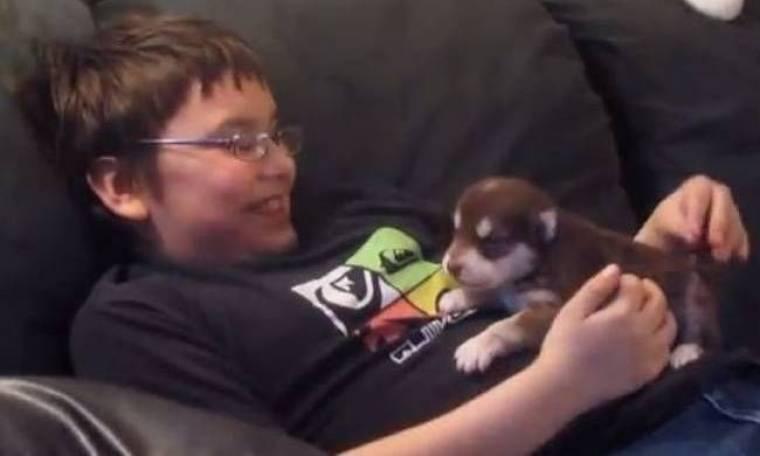 Μαγικό video: Παιδάκι μαθαίνει σε 20 ημερών husky να ουρλιάζει!