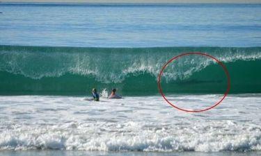 Απίστευτη φωτογραφία: Την ώρα που ήταν στη θάλασσα είδαν έναν...