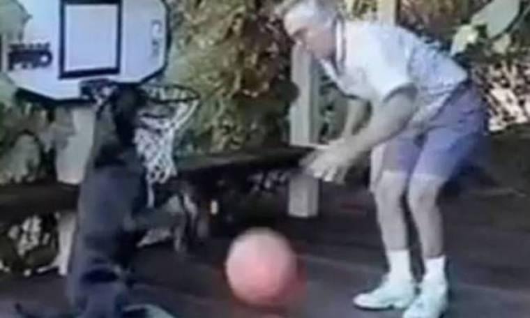 Σκύλος... έτοιμος για το NBA! (βίντεο)