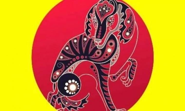 Κινέζικη Αστρολογία: Η ερωτική ζωή του Σκύλου