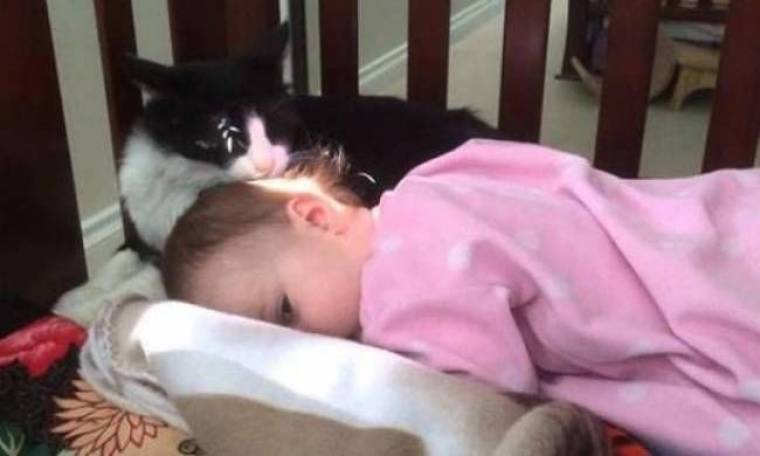Η γάτα που μπέρδεψε το παιδί με το γατάκι της (vid)