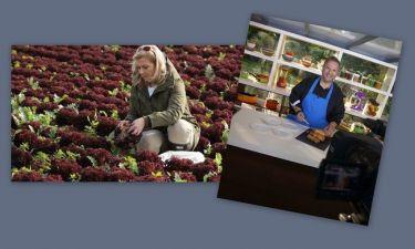 Τι θα δούμε στις εκπομπές «Γεύσεις στη φύση» και «Ελλήνων γεύσεις»