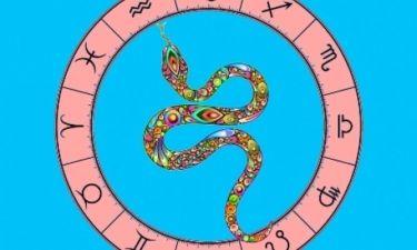 Κινέζικη αστρολογία: Το Φίδι και τα 12 ζώδια της Δυτικής αστρολογίας