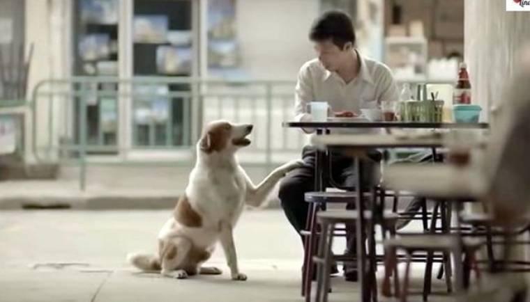 Η συγκλονιστική διαφήμιση που μας δείχνει πως να γίνουμε καλύτεροι άνθρωποι!