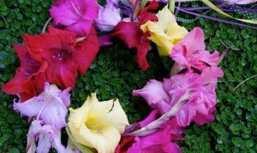 Ερωτική Πρωτομαγιά: Ποια λουλούδια ταιριάζουν στο ταίρι σου;