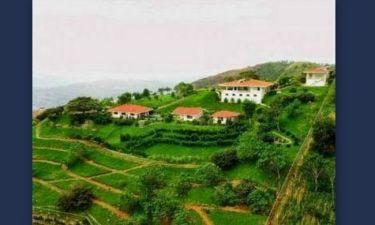 Πόλη Γκρέσια: Μια μικρή Ελλάδα στη Κόστα Ρίκα