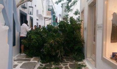 Ισχυροί άνεμοι «σάρωσαν» την Μύκονο! (vid&pics)
