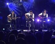 Νίκος Βέρτης: Το βίντεο κλιπ από τις περσινές φαντασμαγορικές συναυλίες του!