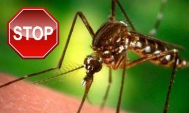 Πώς να προστατευτείτε από τα κουνούπια