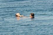 Κορίτσια ο «Μπεχλούλ» κάνει διακοπές στην Μυτιλήνη!
