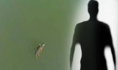 Βρήκαν τον «πατέρα» του Σήφη, του κροκόδειλου! (vids)