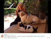 Η Μενεγάκη παίζει με το σκύλο της στην αυλή του σπιτιού της! (φωτογραφίες)