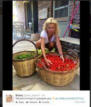 Η Ελένη, τα ντοματίνια και οι φωτό στο twitter