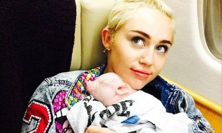 Miley Cyrus: Η αδυναμία της... ένα γουρουνάκι