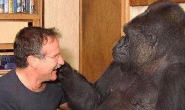 Δείτε και δακρύστε! Το δράμα της Κοκό. Απαρηγόρητη από το θάνατο του Robin Williams!
