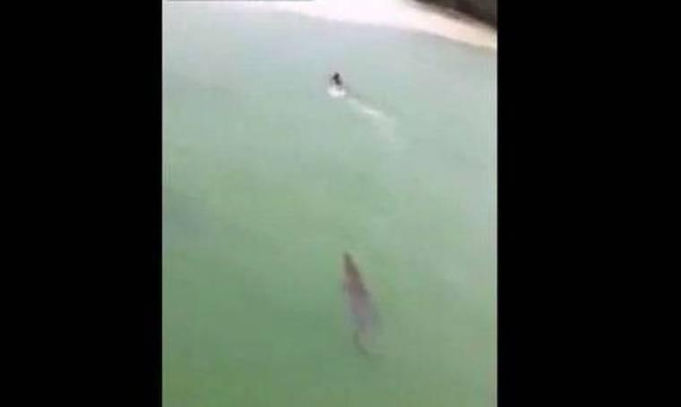 Απίστευτο βίντεο: Κροκόδειλος κυνηγά άνδρα στην λίμνη
