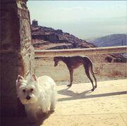 Μαρία Μπακοδήμου: Νέες φωτογραφίες από τις διακοπές της στην Τήνο