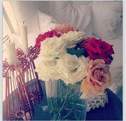 Ποια μάζεψε τριαντάφυλλα από τον κήπο της!