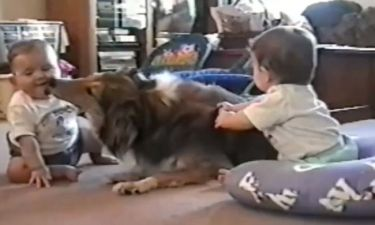 Παιδιά VS σκύλων: Ποιος κερδίζει σε αυτή τη μάχη μέσα στο σπίτι;