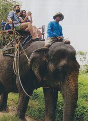 Οι πρώτες εικόνες από το «Μπρούσκο» στην Ταϊλάνδη