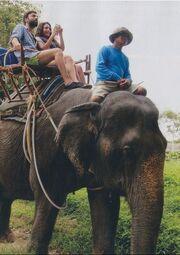 Τι οδήγησε το «Μπρούσκο» στην Ταϊλάνδη;