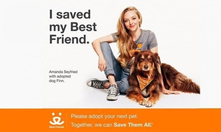 Amanda Seyfried: Υιοθετήστε ζώα από τα καταφύγια