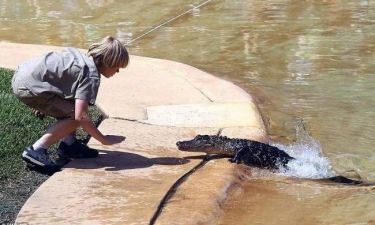Κροκόδειλος κόντεψε να δαγκώσει τον γιο του...  γιο κροκοδειλάκια (pics)