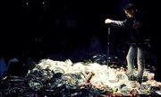 Στο Ισραήλ δεν έχουν κρίση... λουλουδοπόλεμος για Έλληνα τραγουδιστή