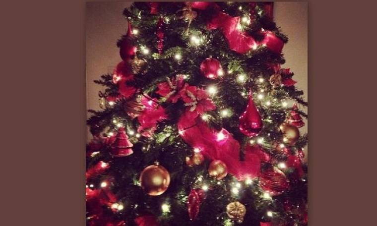 Στόλισε το Χριστουγεννιάτικο δέντρο της η…