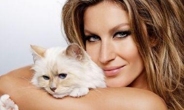 Η Ζιζέλ και η γάτα του… Λάγκερφελντ