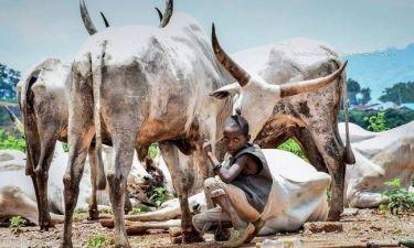 Νιγηρία: Μαγευτικές φωτογραφίες