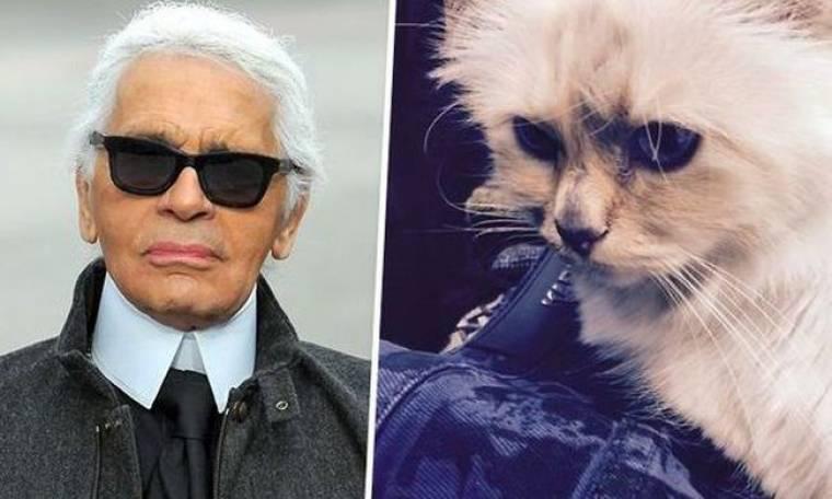 Θα πάθετε πλάκα με το ποσό που κερδίζει ετησίως η… γάτα του Karl Lagerfeld