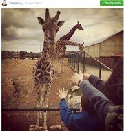 Βίκυ Καγιά: Πήγε στο ζωολογικό πάρκο  και ενθουσιάστηκε με…