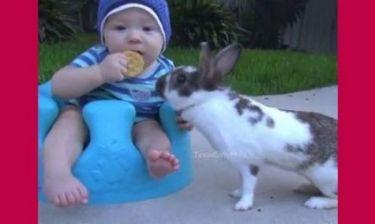 Αυτό το μωρό συναντά ένα κουνελάκι! Η συνέχεια θα σας κάνει να ξεκαρδιστείτε! (βίντεο)