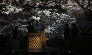 Eurovision 2015: Ιρλανδία: «Παίζουν με τους αριθμούς» και στέλνουν το μήνυμα τους