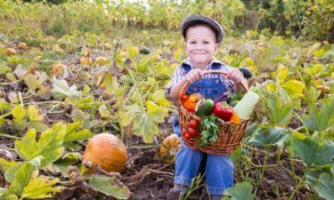 Πώς θα μάθετε το παιδί σας να τρώει λαχανικά