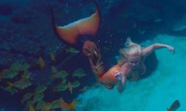 Γοργόνα κολυμπά δίπλα σε δολοφονικά σαλάχια! (photos+videos)